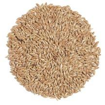 Canadian Canary seed for Human Consumption 16oz
