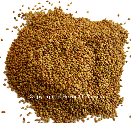 Alfalfa Seeds Whole 16 oz.
