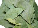 Bay Leaves 16oz