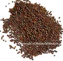 Black Mustard Seeds 16oz